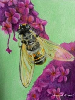British bee (copy)