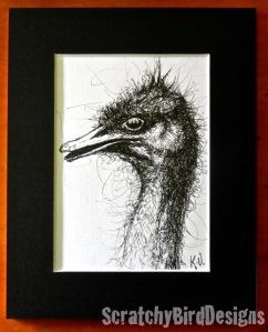 ostrich (copy)