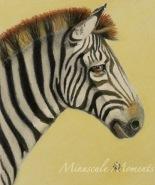 Zebra (Mogo Zoo) by Kath Unsworth